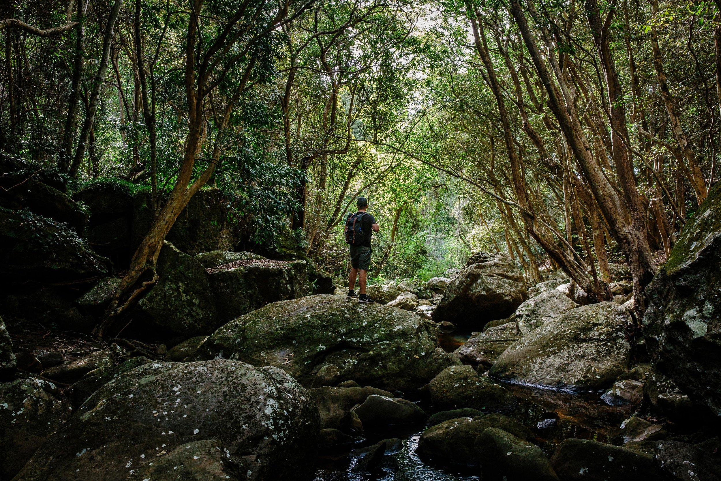 Lachlan-Jordan-Photography-8490.jpg