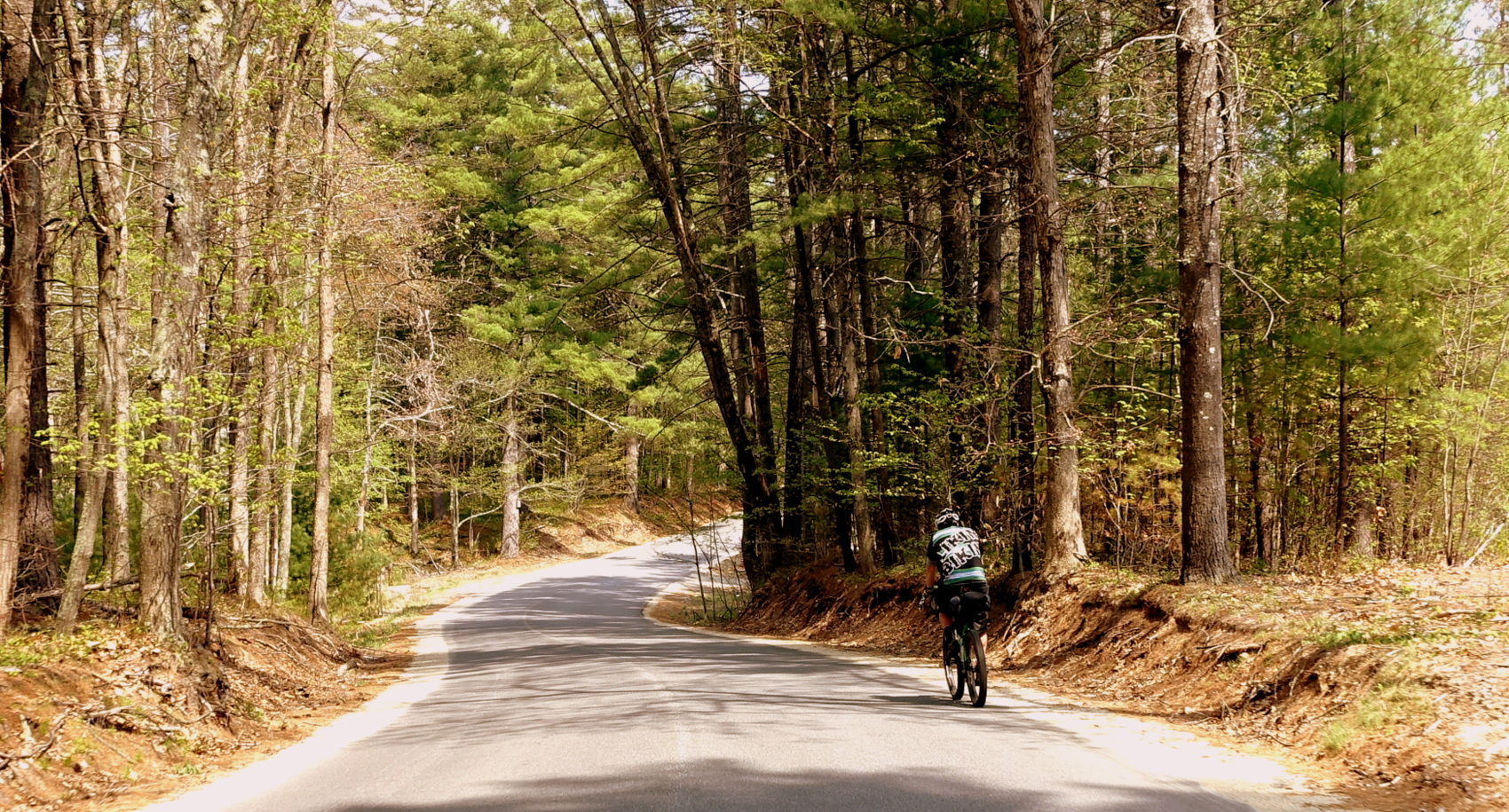 The Forest Road :   Daniel Mutz  had the car-less roads, and remote trails, to himself for many miles.  He did the Long Ride:  250-mile Bikepacking Division.
