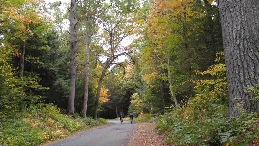 Autumn in all its glory - Photo: Patria Vandermark