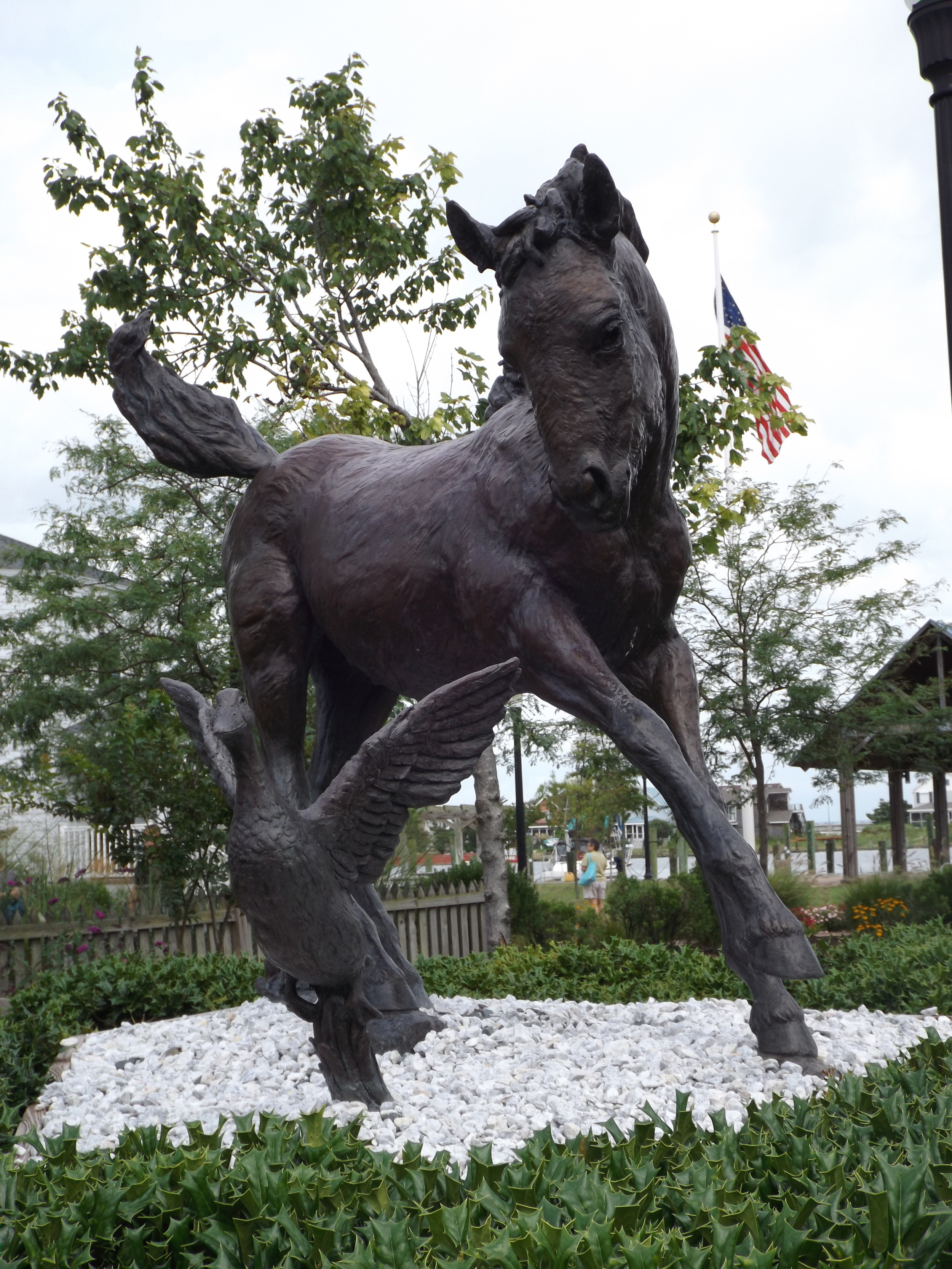 Chincoteague and Assateague arefamous for the wild ponies, particularly Misty from the popular children's book, but the islands also have a hidden Civil War history.