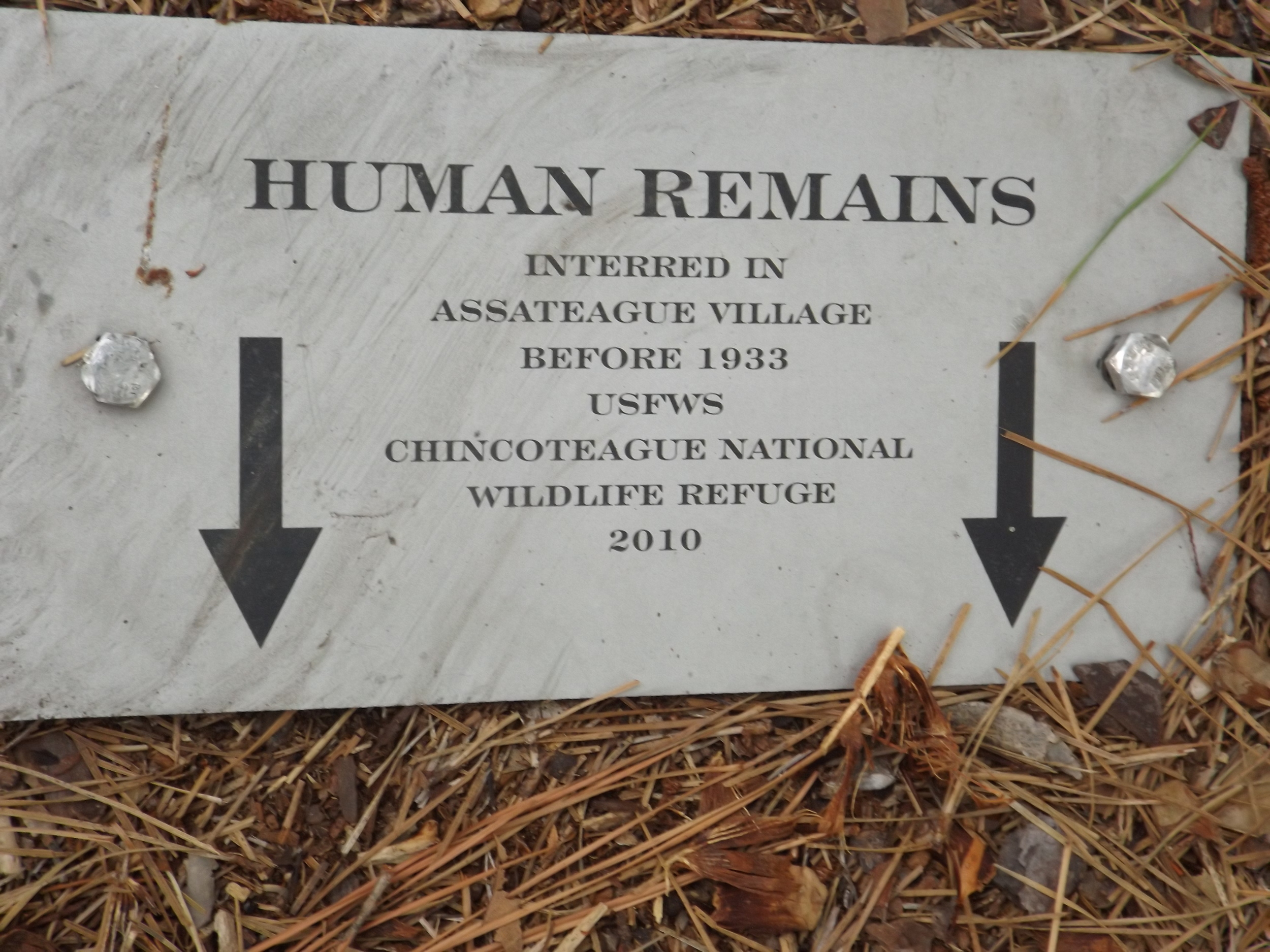 Official plaques have replaced the original headstones, destroyed by the water and shifting sand of the shore.