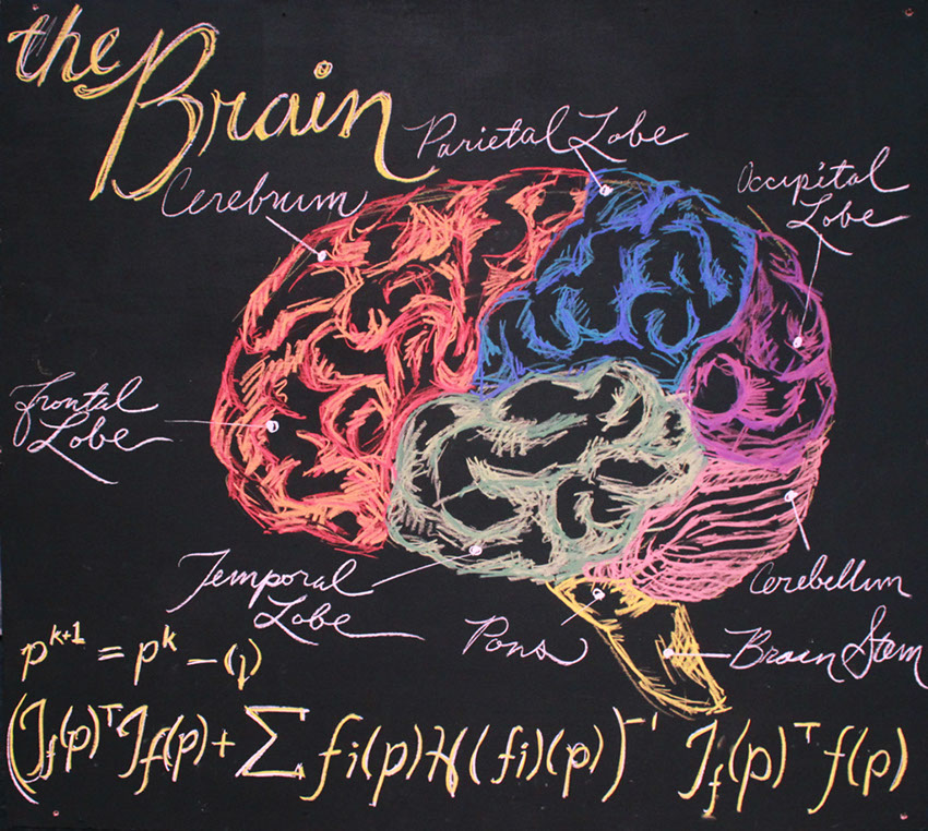"Young Frankenstein, ""The Brain"""
