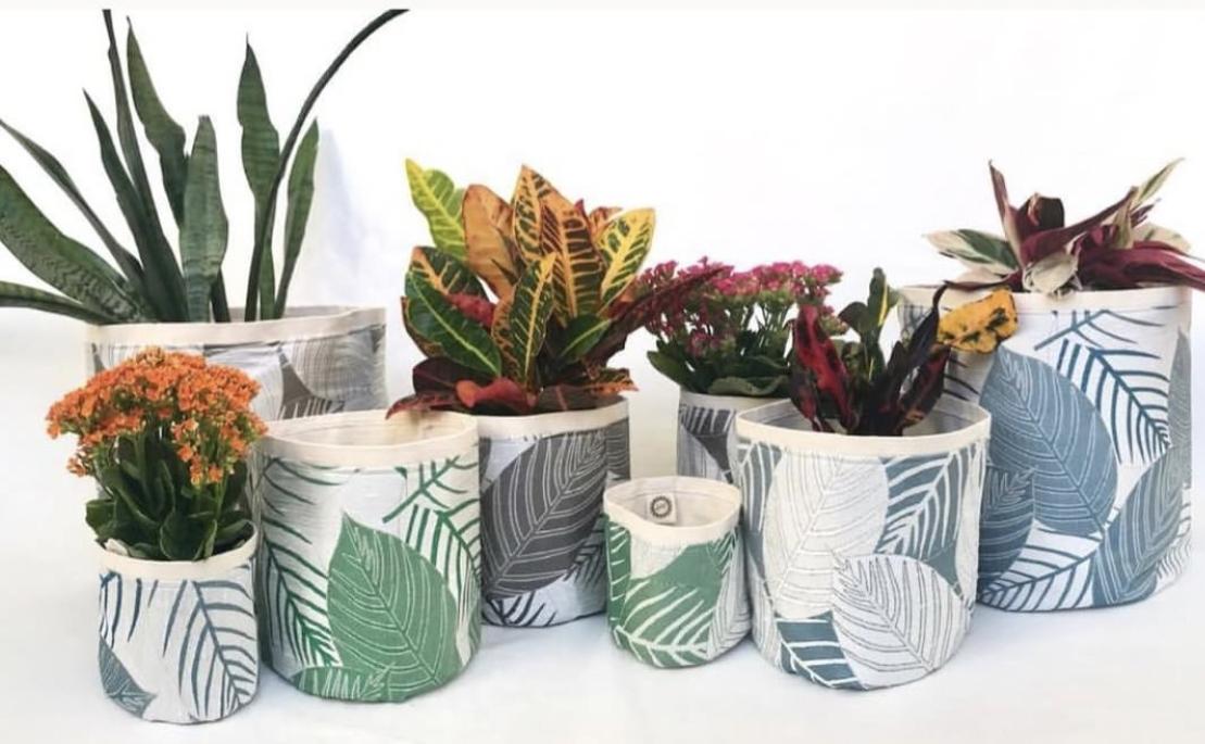 www.plantsax.com