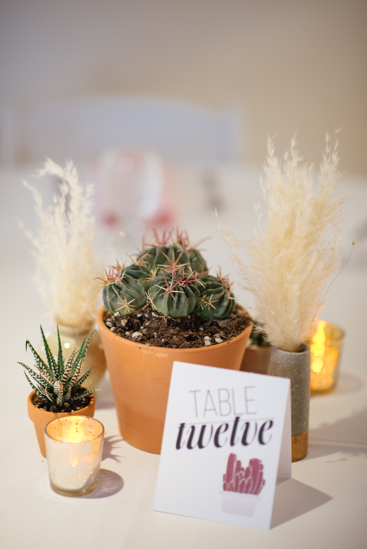 TMA_Wedding_Tucson1.jpg