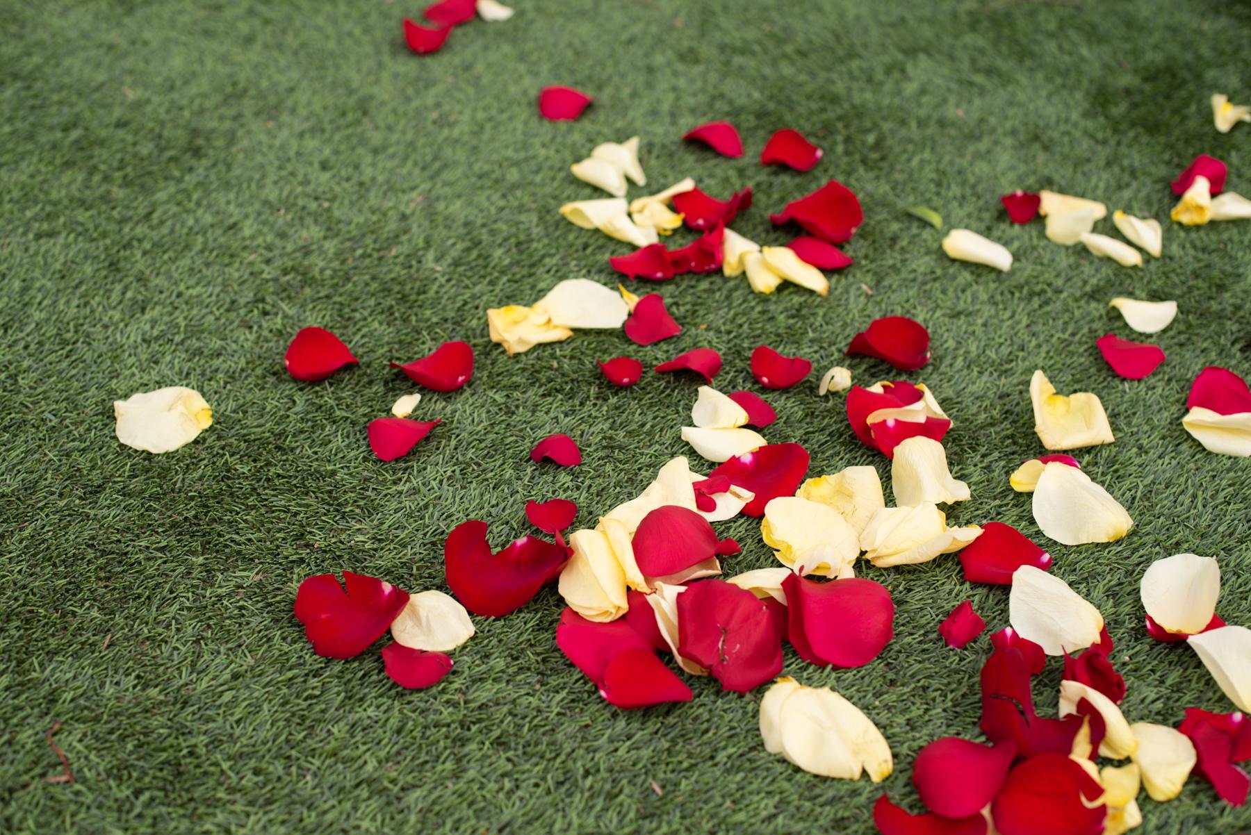 Secret Garden Event Center Wedding - Meredith Amadee Photography-98.jpg