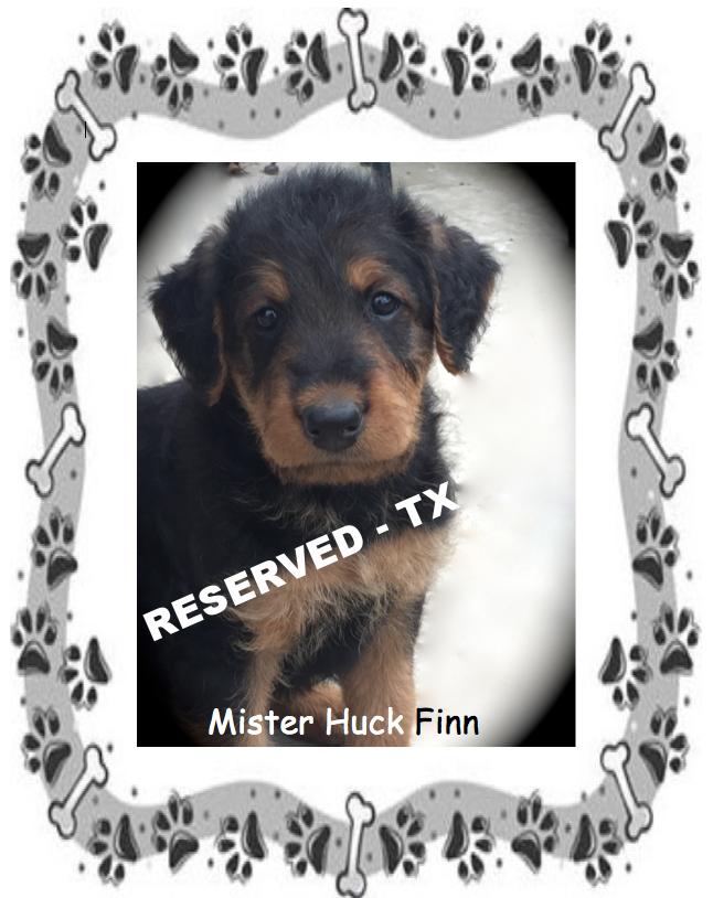 Mister Huck Finn.png