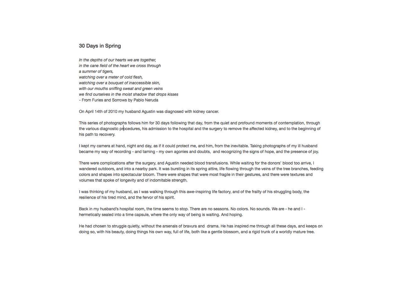 licis-ribak_30 DAYS IN SPRING_TEXT.jpg