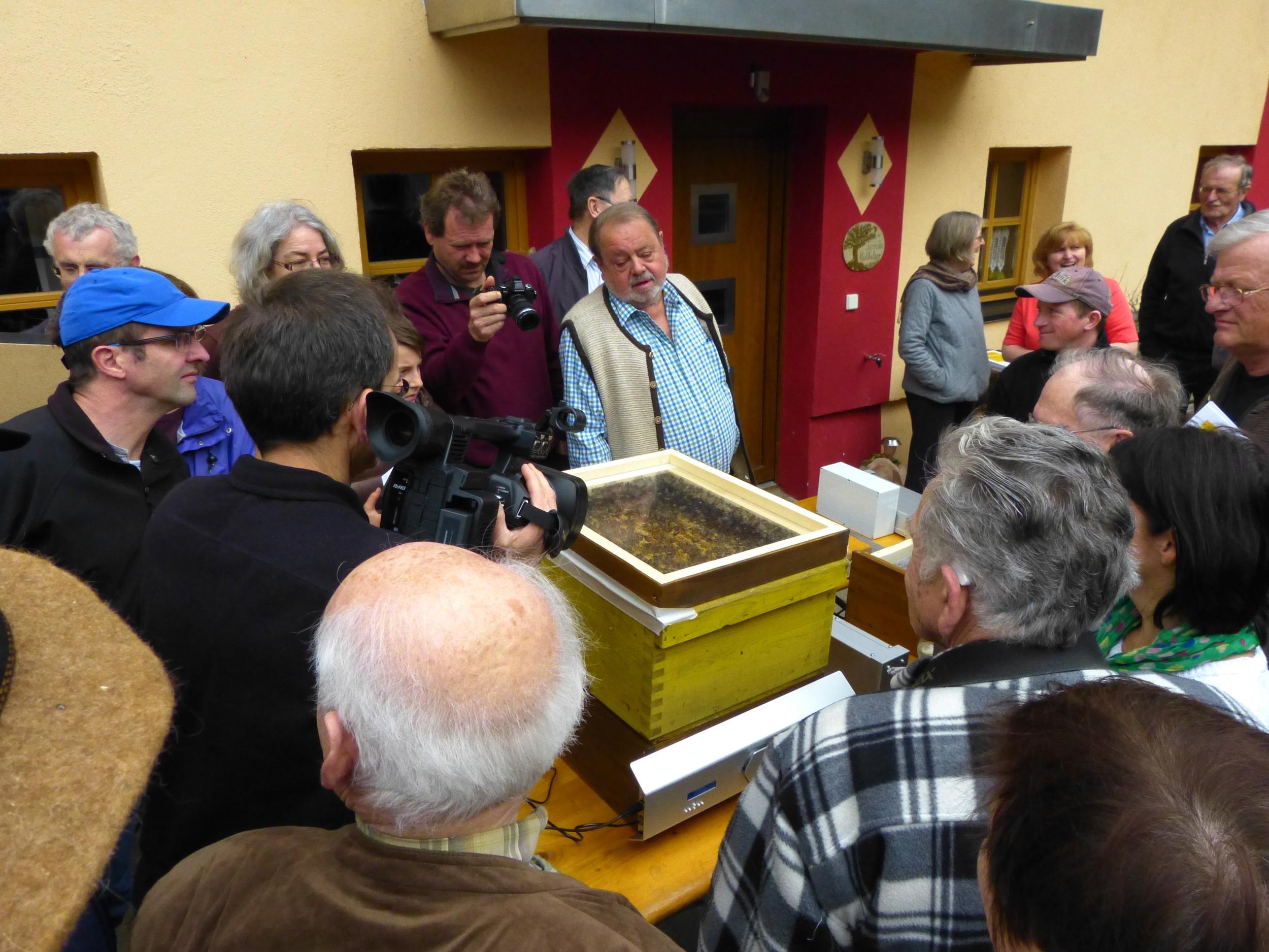 Bienensauna-Behandlung in Oberbergkirchen