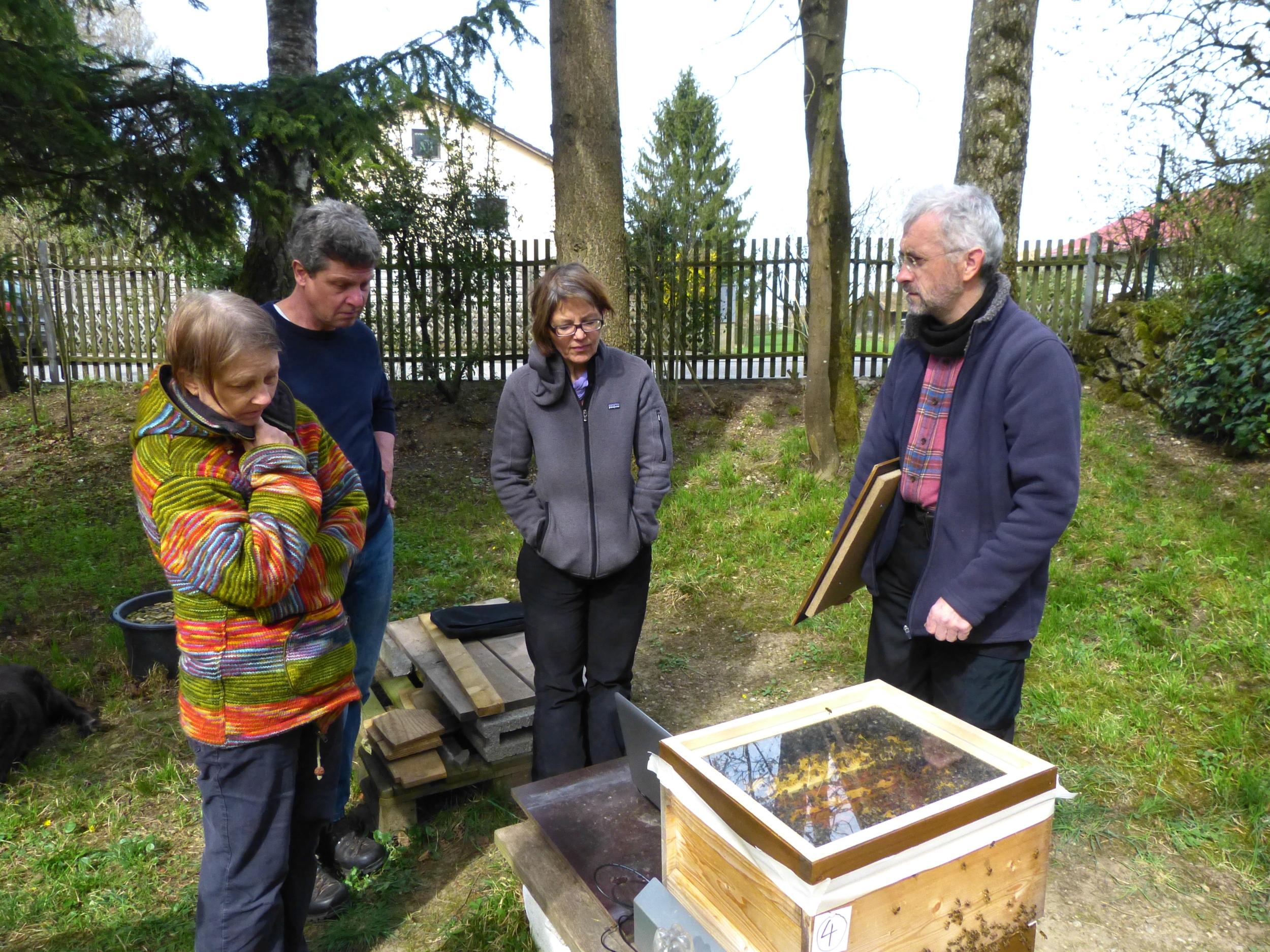 Bienensauna-Vorführung in Zorneding