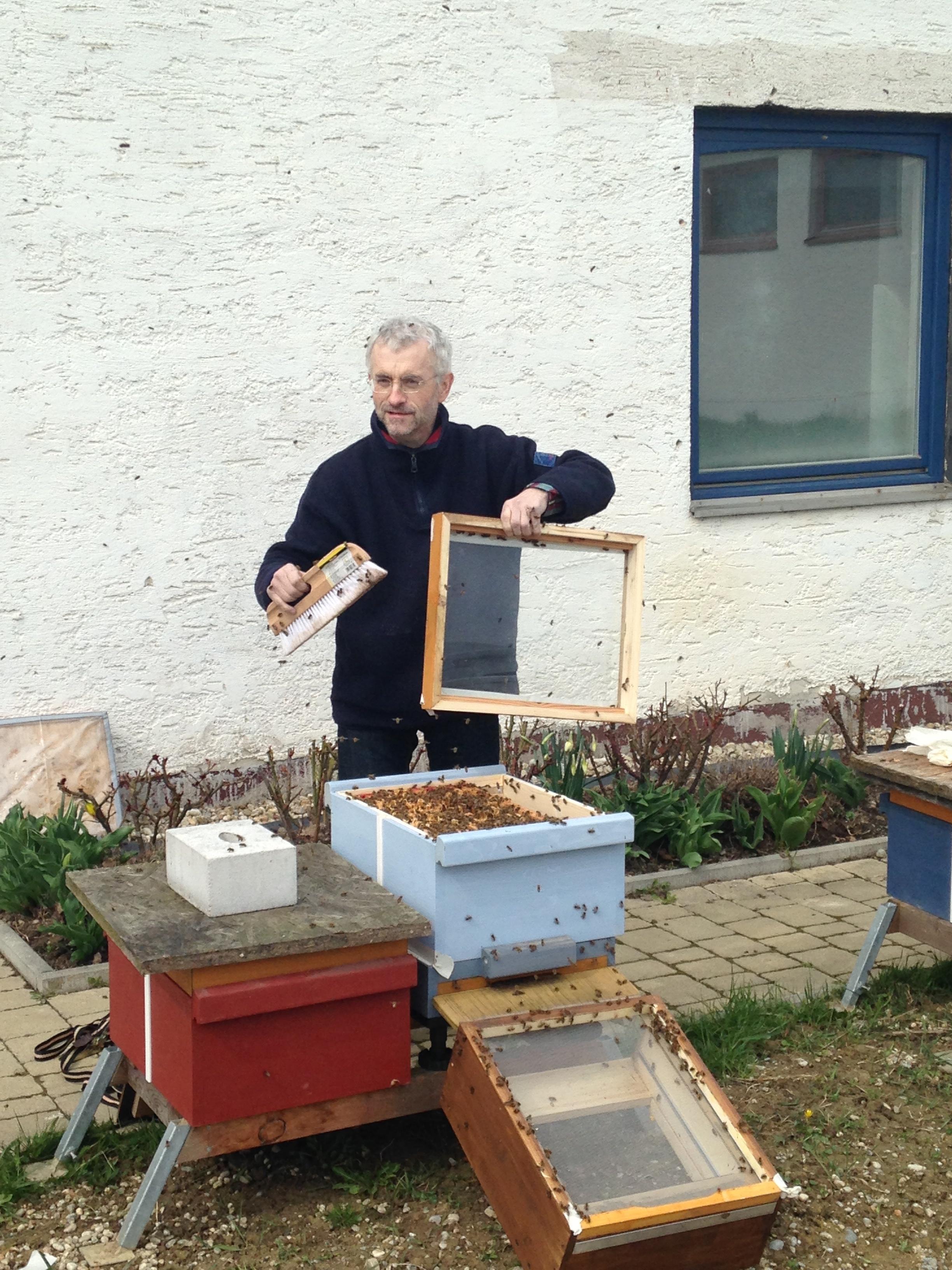 Bienensauna- Vorführung in Fürstenzell