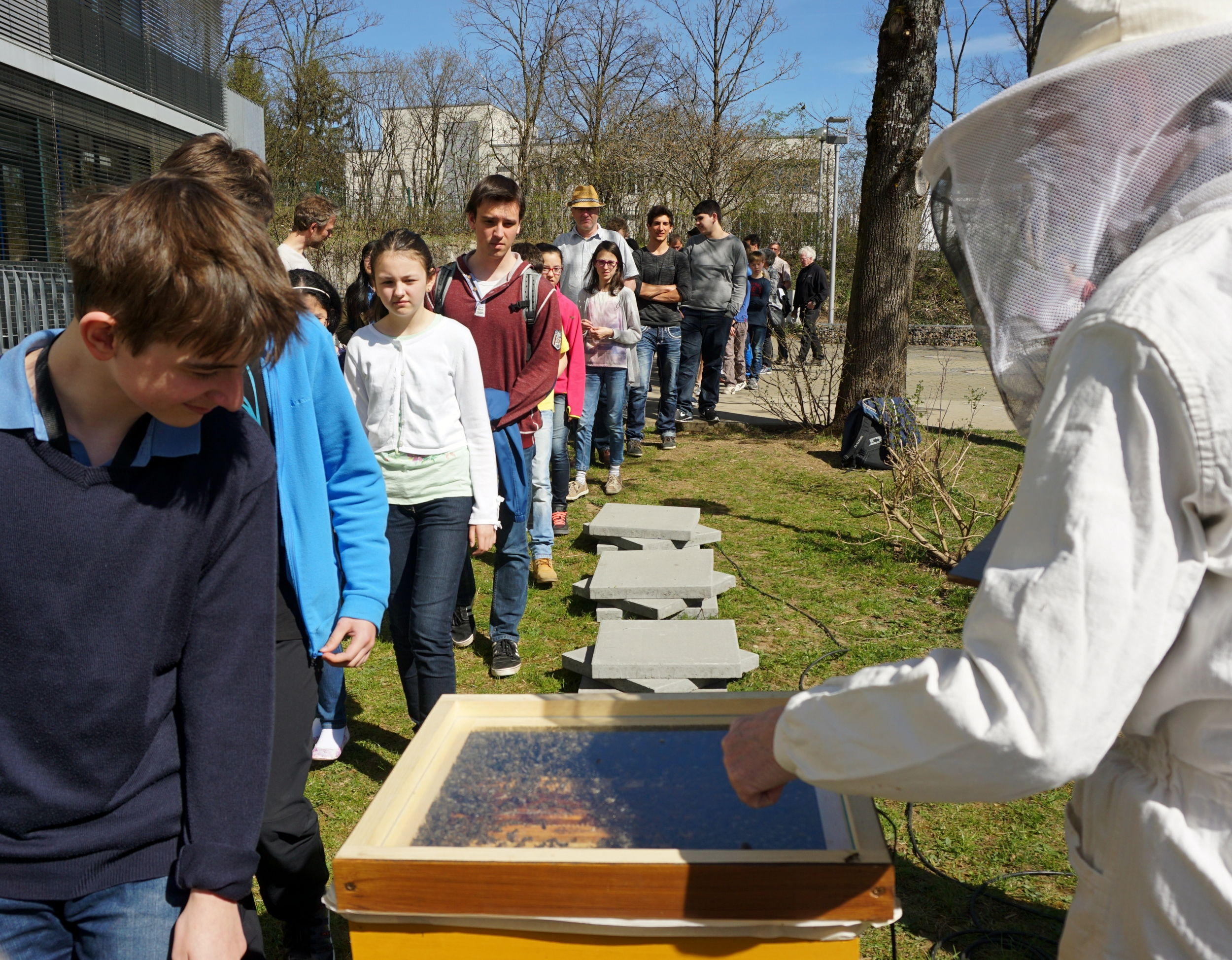 Bienensauna-Vorführung in Haar bei München