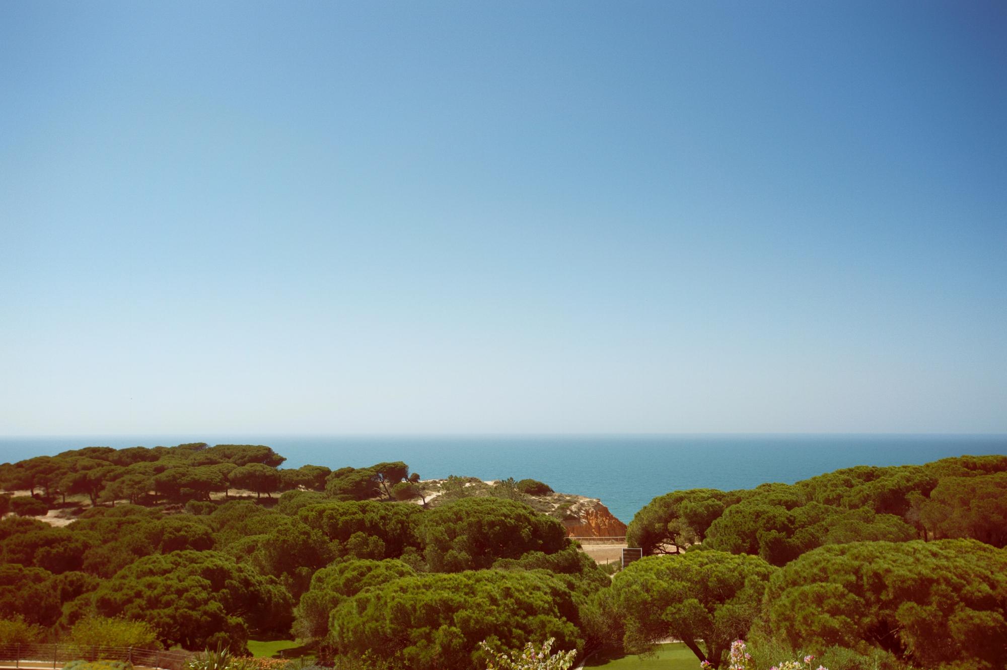 Algarve triathlon dojo 1.jpg