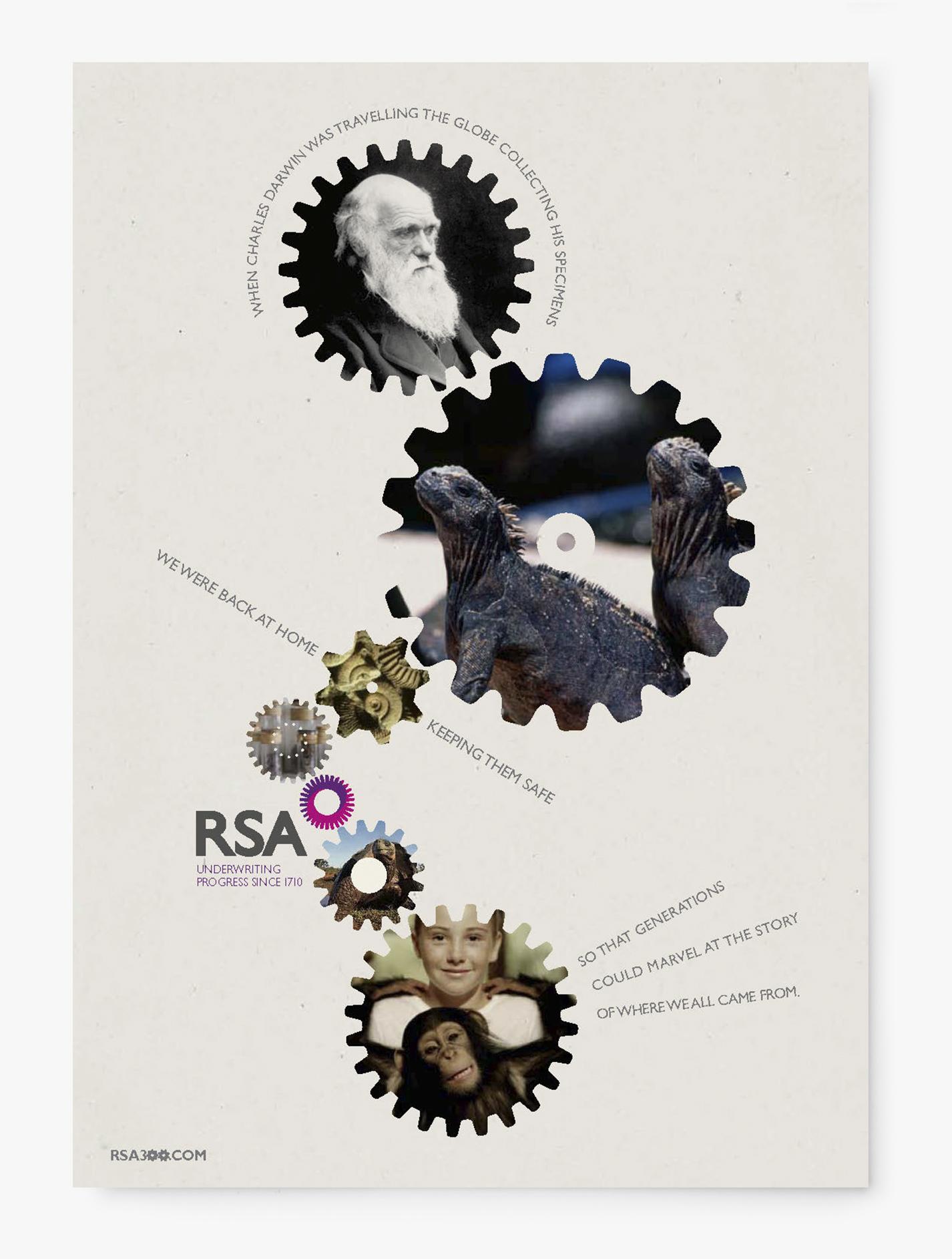 RSA_Cogs1.jpg