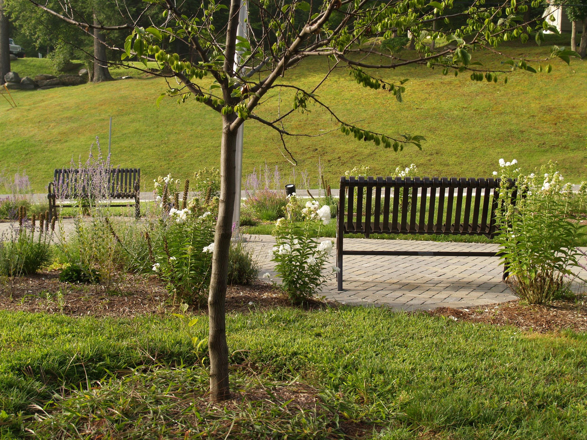Springfield Hospital Centennial Garden - Springfield, Vermont