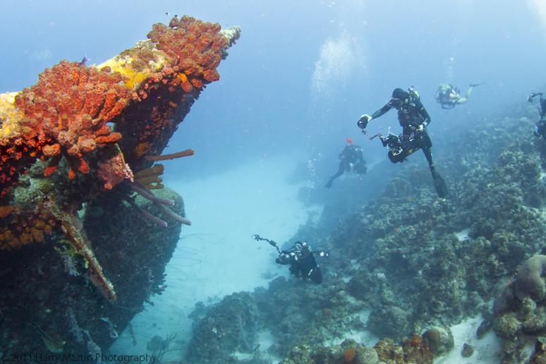 Aruba and the Digital Shootout