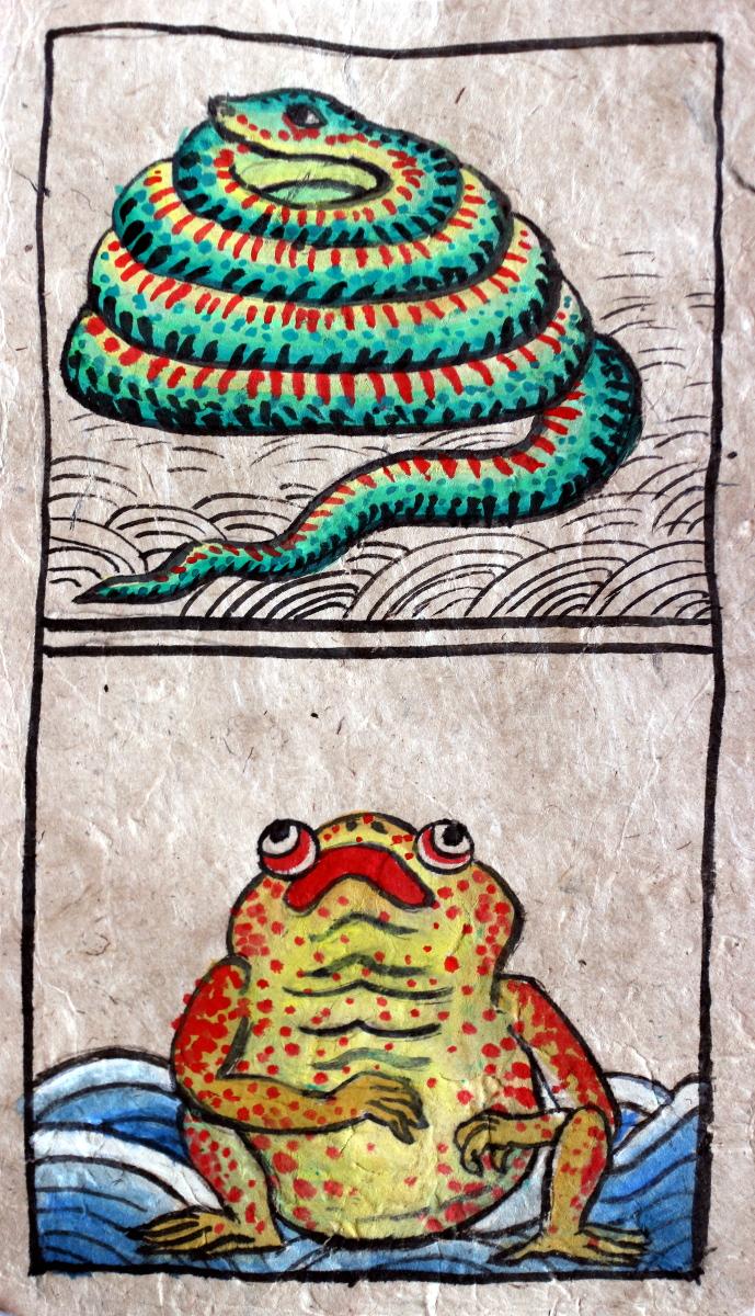dabba_frog.JPG