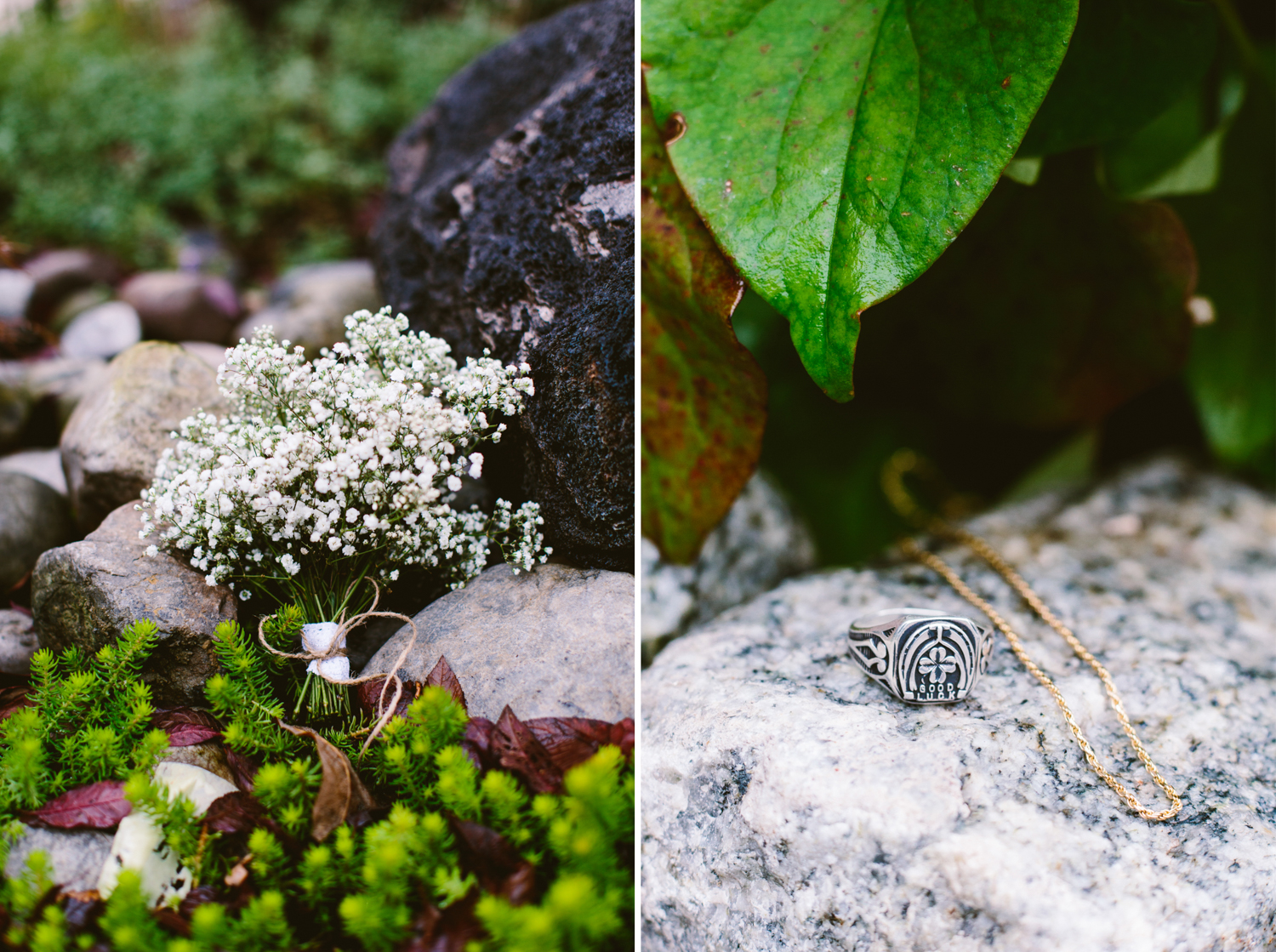 Bowman's Hill Wildflower Preserve Wedding