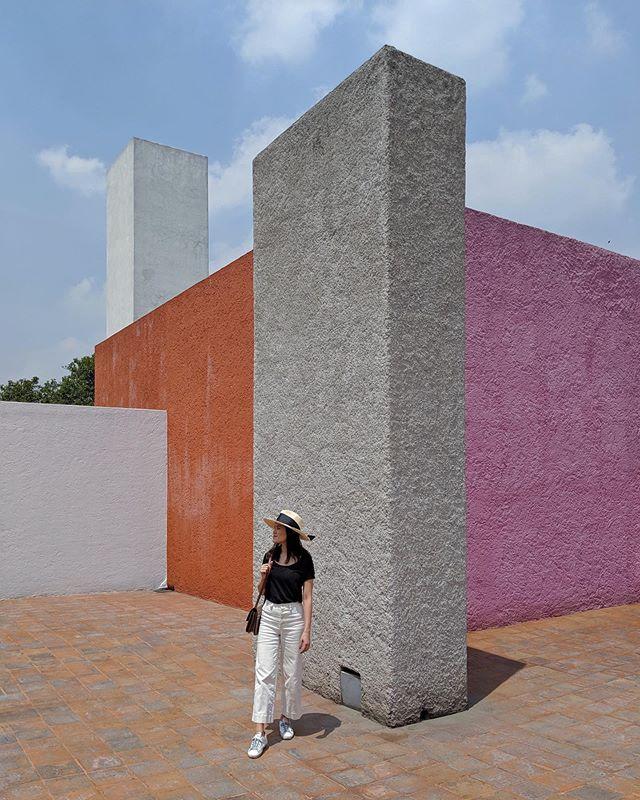 Barragán colours ✨
