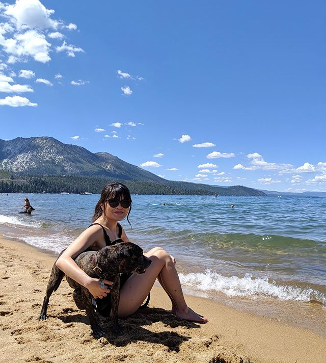 Had the best weekend with my son @maxistaffy before his surgery today 🐶 Thank you to @kathryncsullivan and @kylo_doodle for their Lake Tahoe recs 💕 (link in bio for more info on Max's surgery)