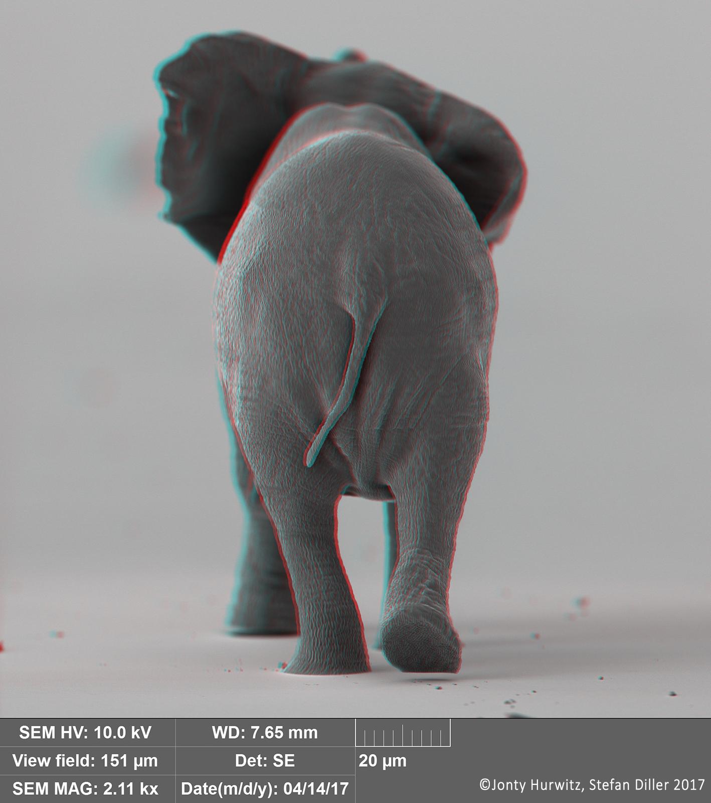 Jonty-Hurwitz-Nano-Elephant-3D-2.png