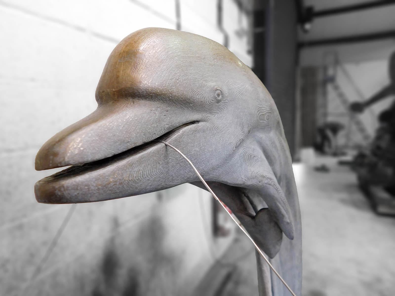 Dolphin-Jonty-Hurwitz-4.jpg