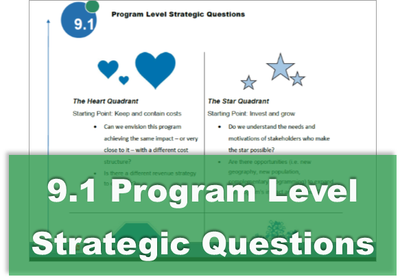 9.1 Program Level Strategic Questions