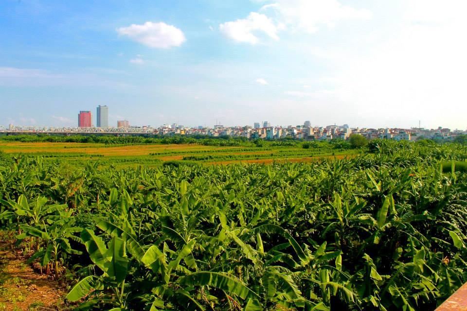 View from Long Bien Bridge
