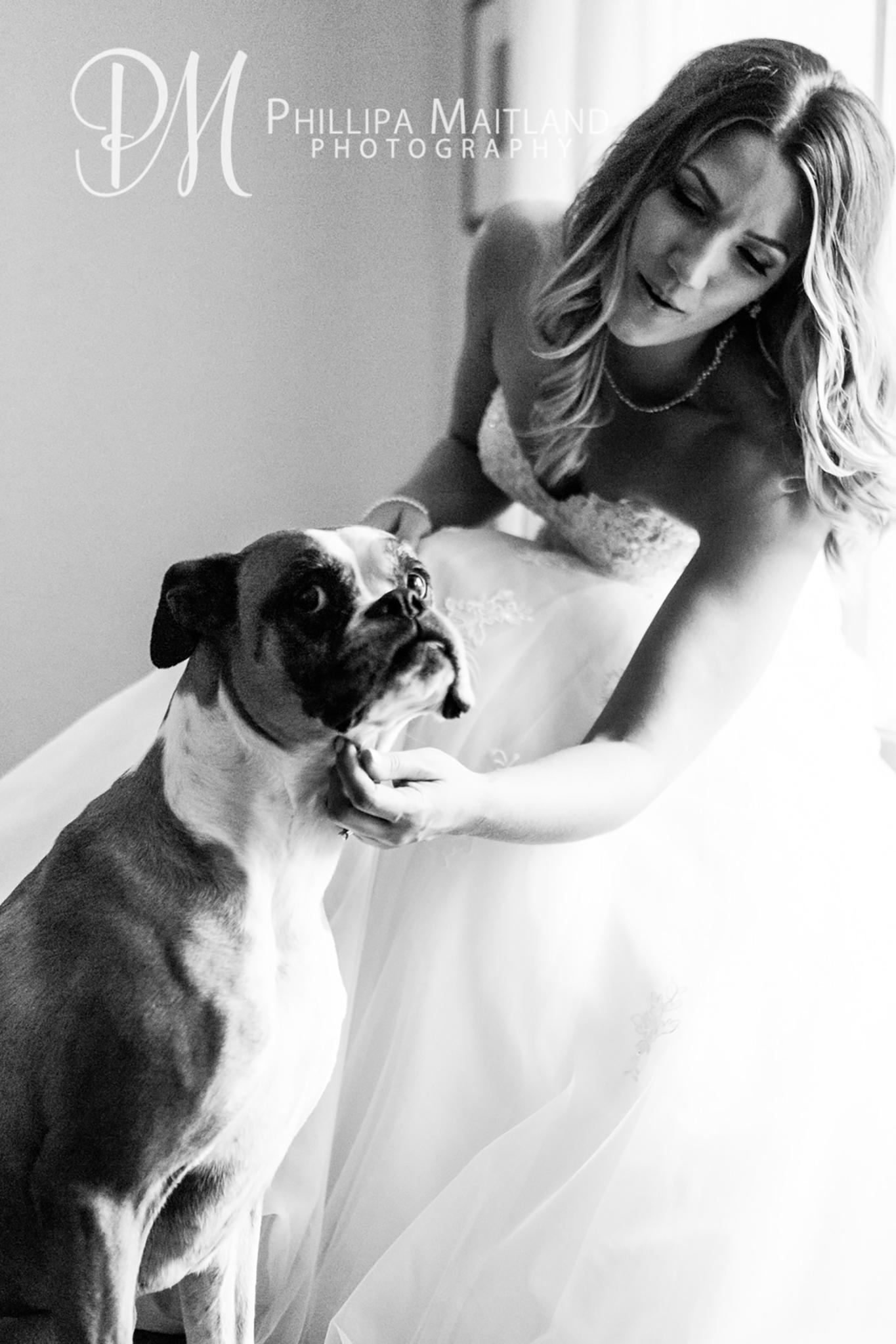 Ottawa Wedding Photographer 10.jpg