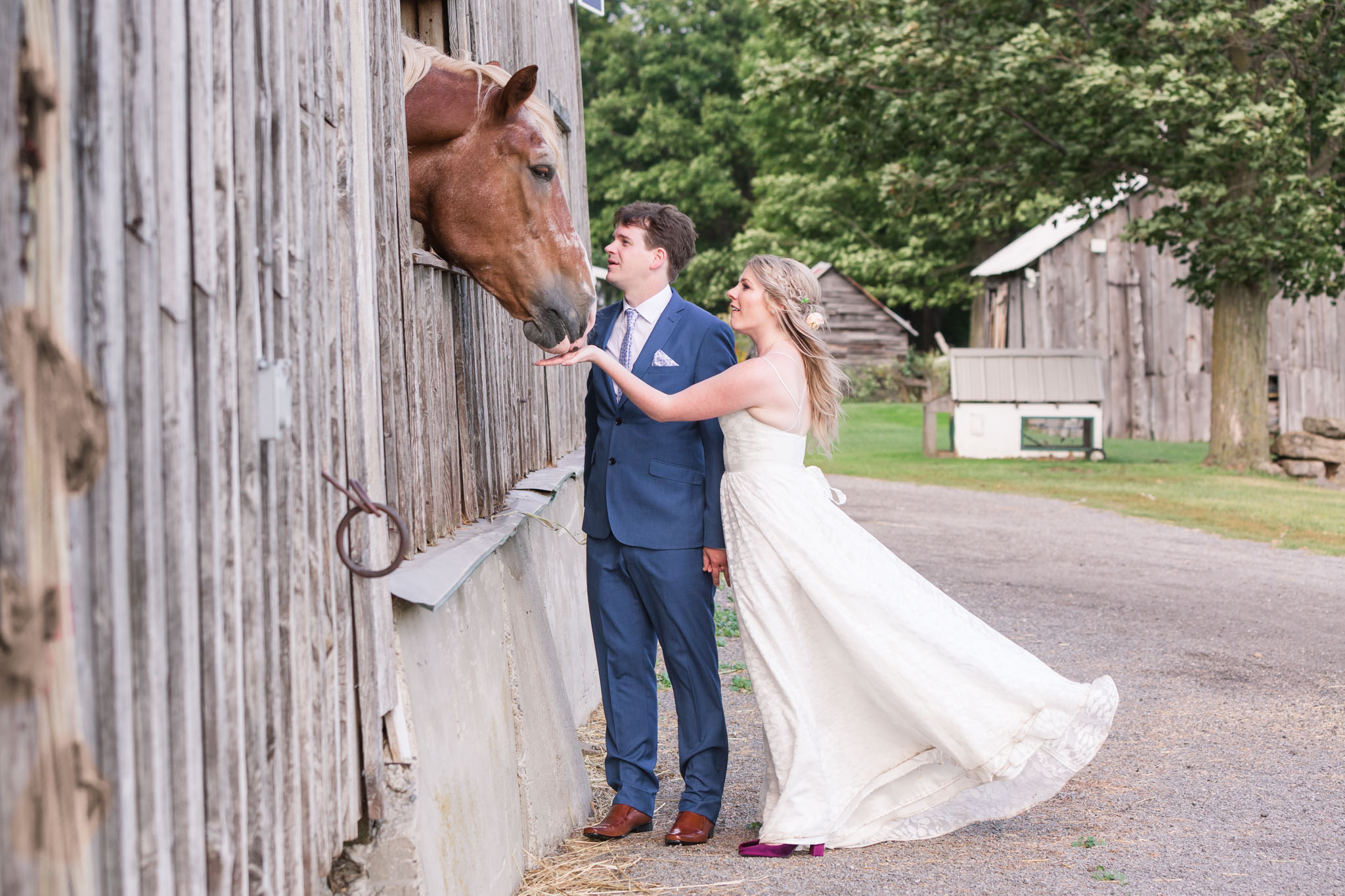 Tornado Wedding Stanleys Olde Maple Lane Farm Photography (106).JPG