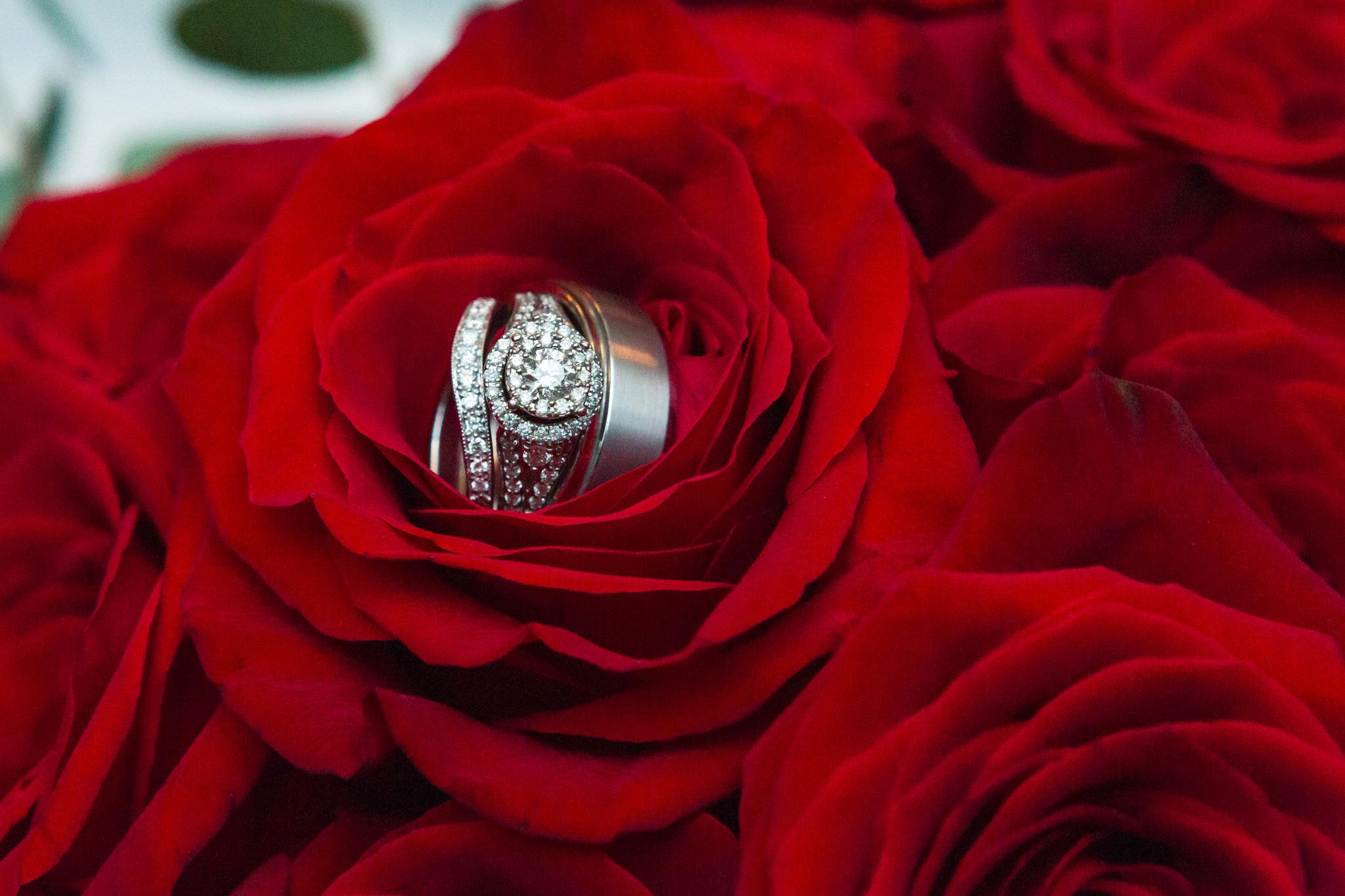 Hilton Wedding Photographer-2655.JPG