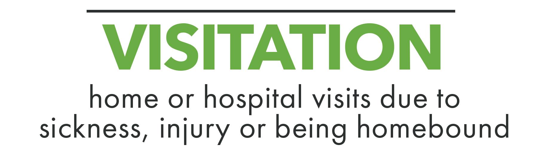 WEB_CARE._Titles_Visitation.png