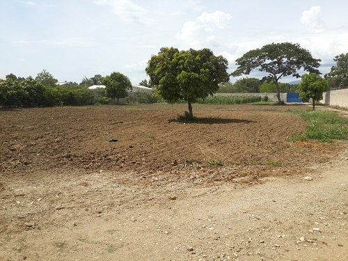 Farm Field Ready for planting.jpg