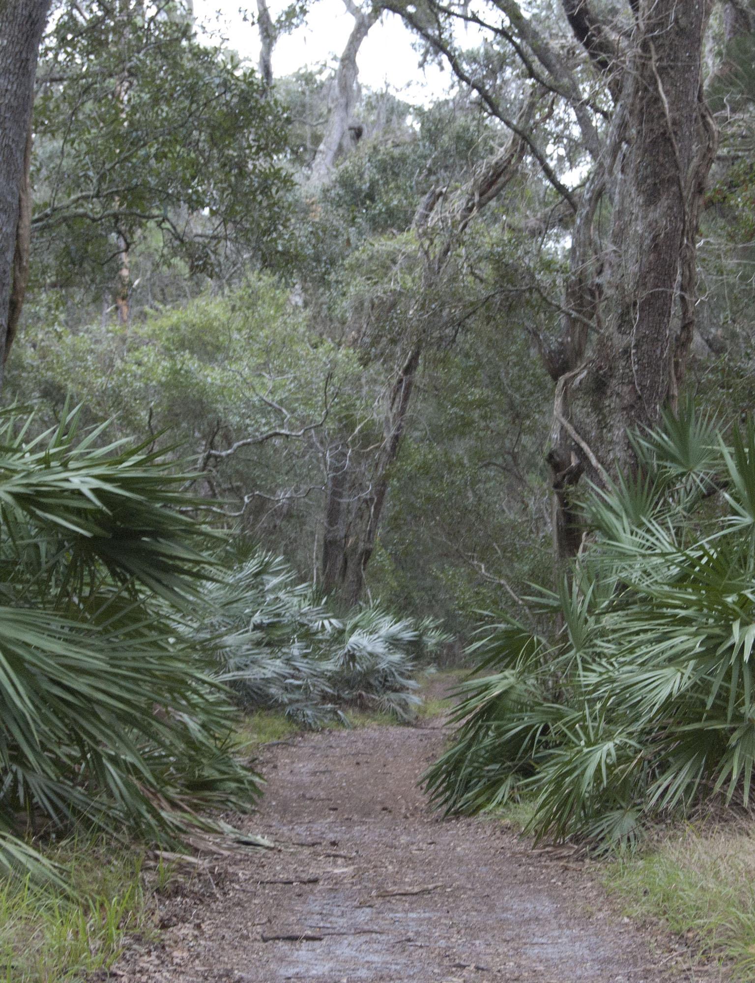 Guana River State Park, FL