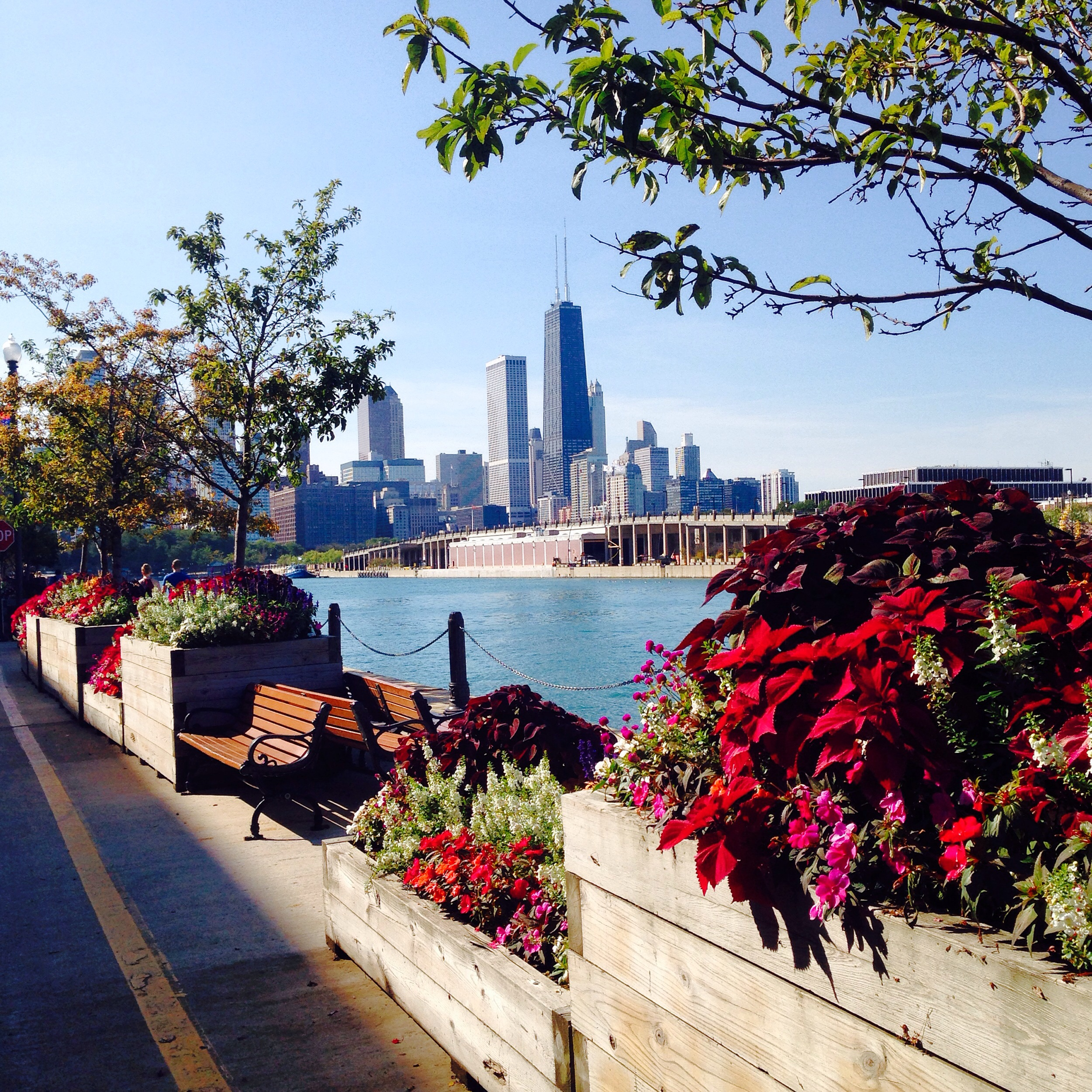 a walk on navy pier
