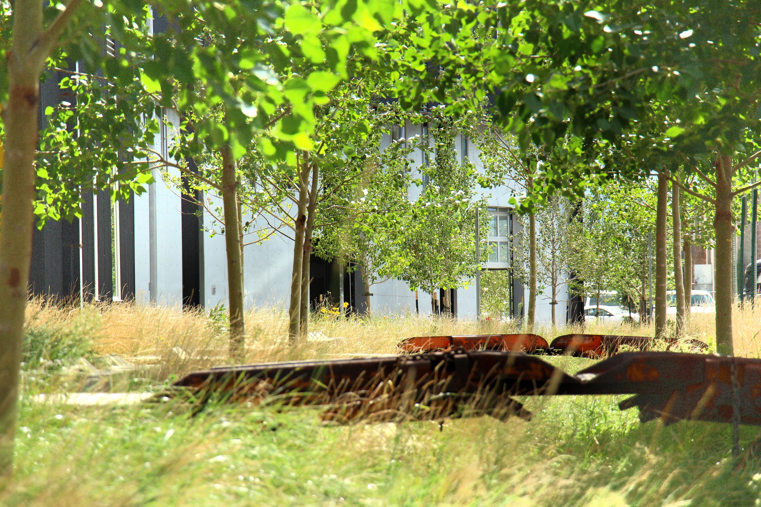 DRIVE 1  Porous Landscape Detention Swale