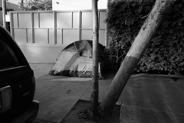 TentTressCar799.jpg