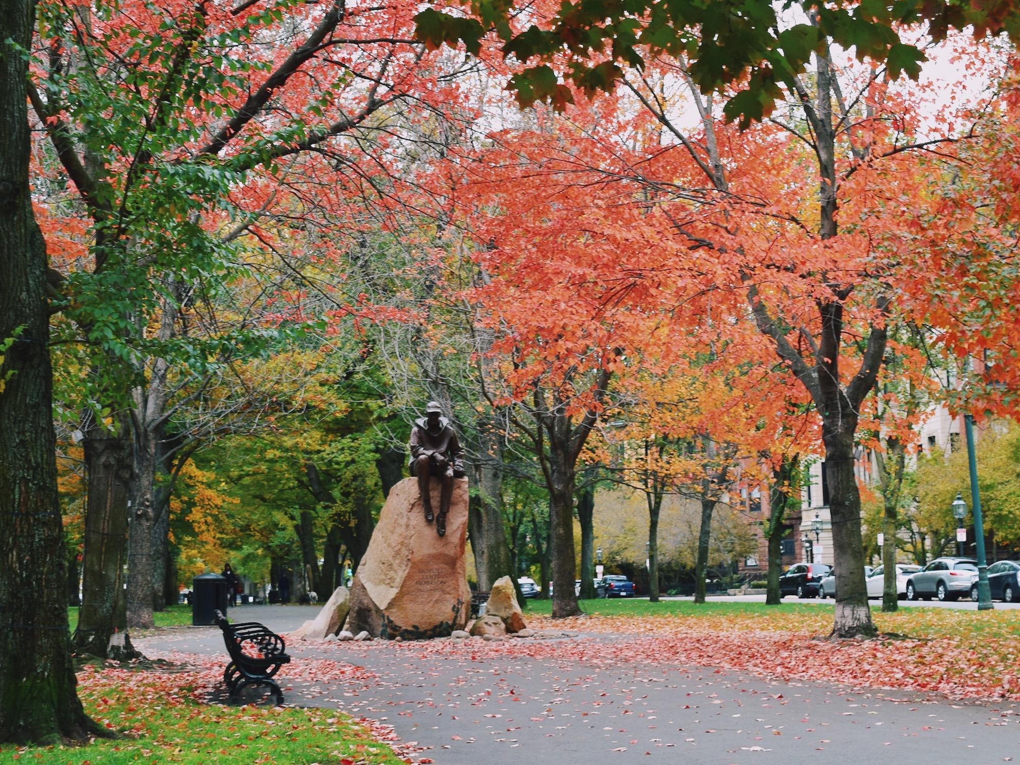 boston-foliage