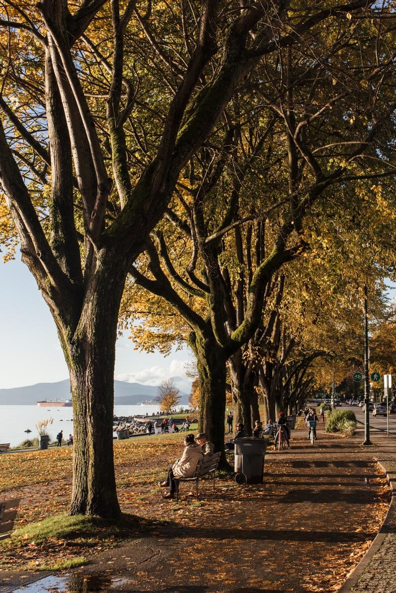161020-165841-Vancouver-a1-8041.jpg
