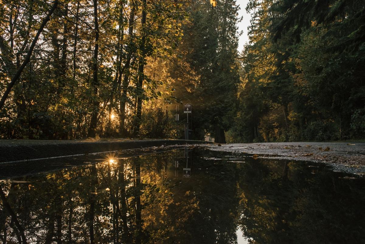 161020-174450-Vancouver-a1-8177.jpg