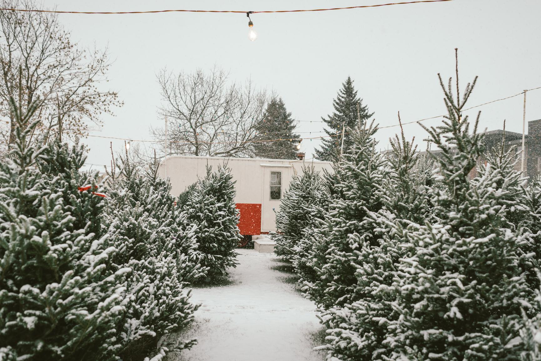 161204-113450-December-a1-1737.jpg