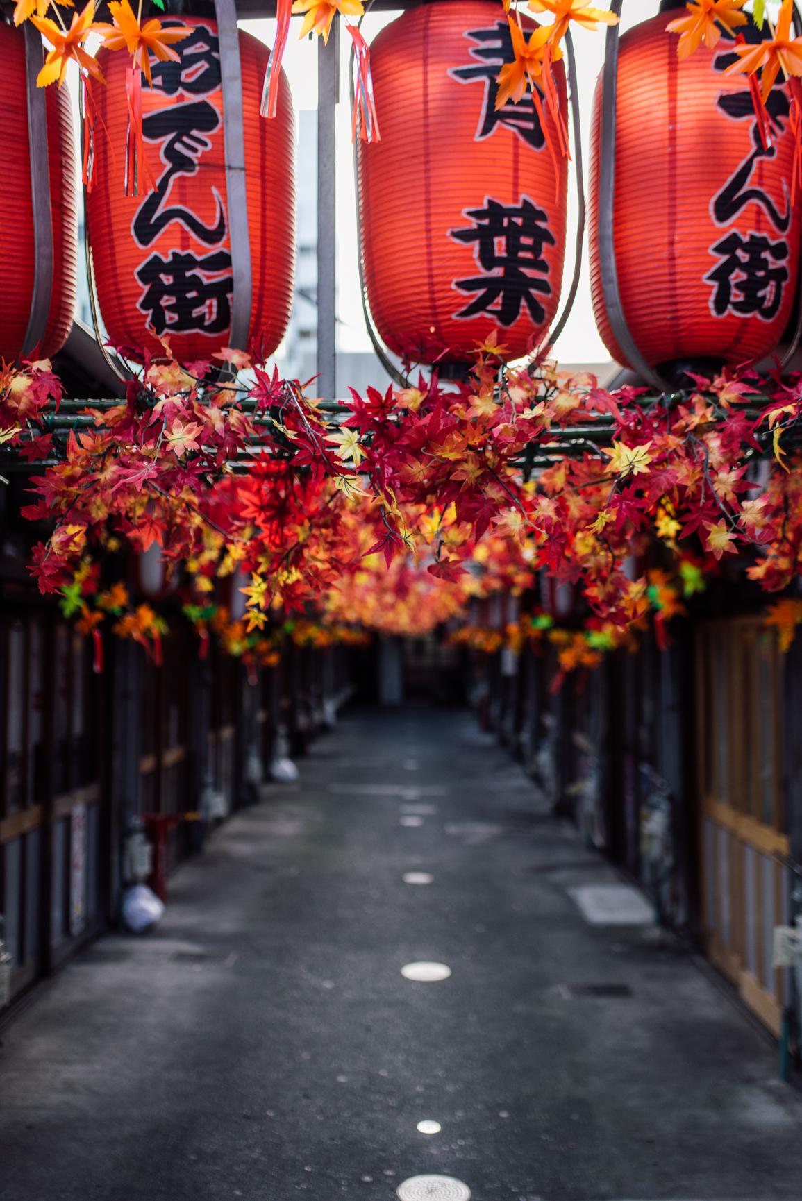 161113-Japan-5003207-071423-9509.jpg