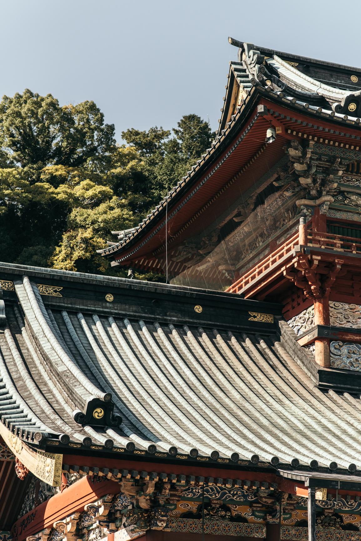 161113-Japan-5003207-112511-9577.jpg