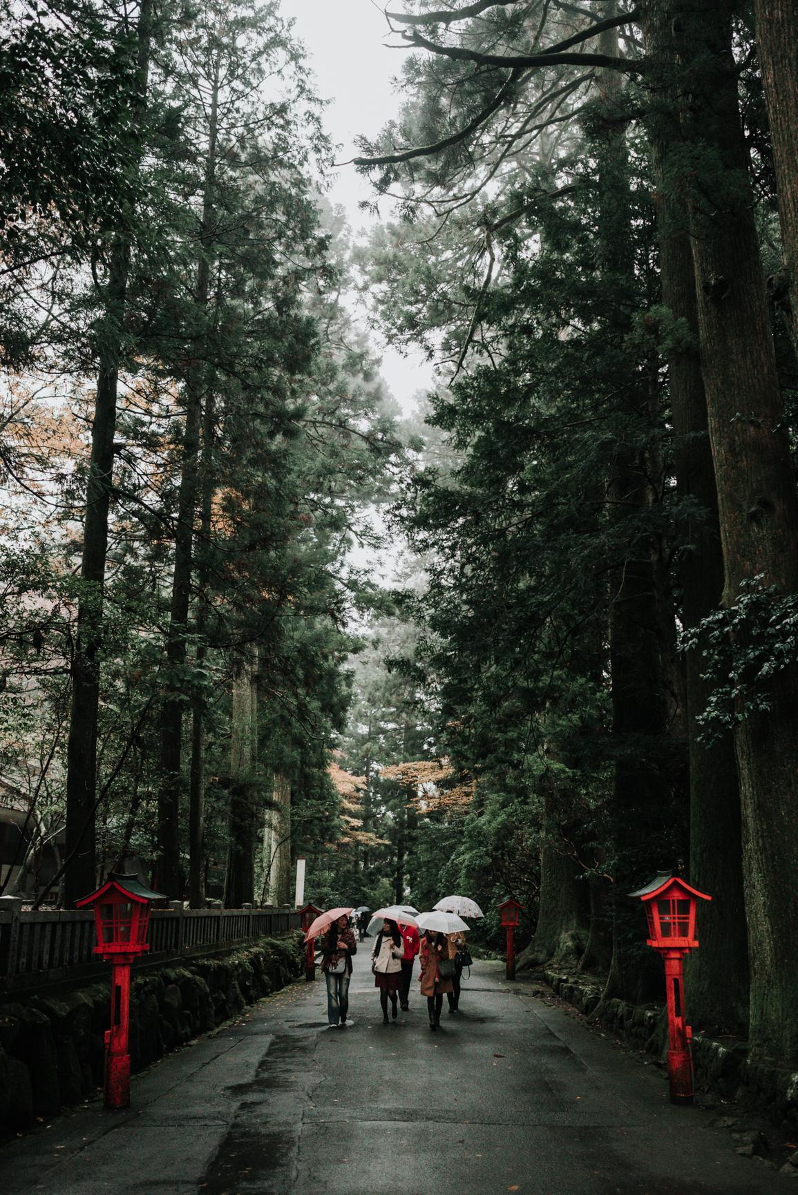 161119-Japan-5003207-135300-0425.jpg