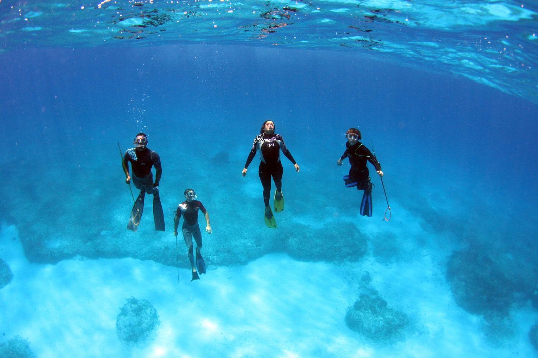 Scuba Diving off of Devil's Point