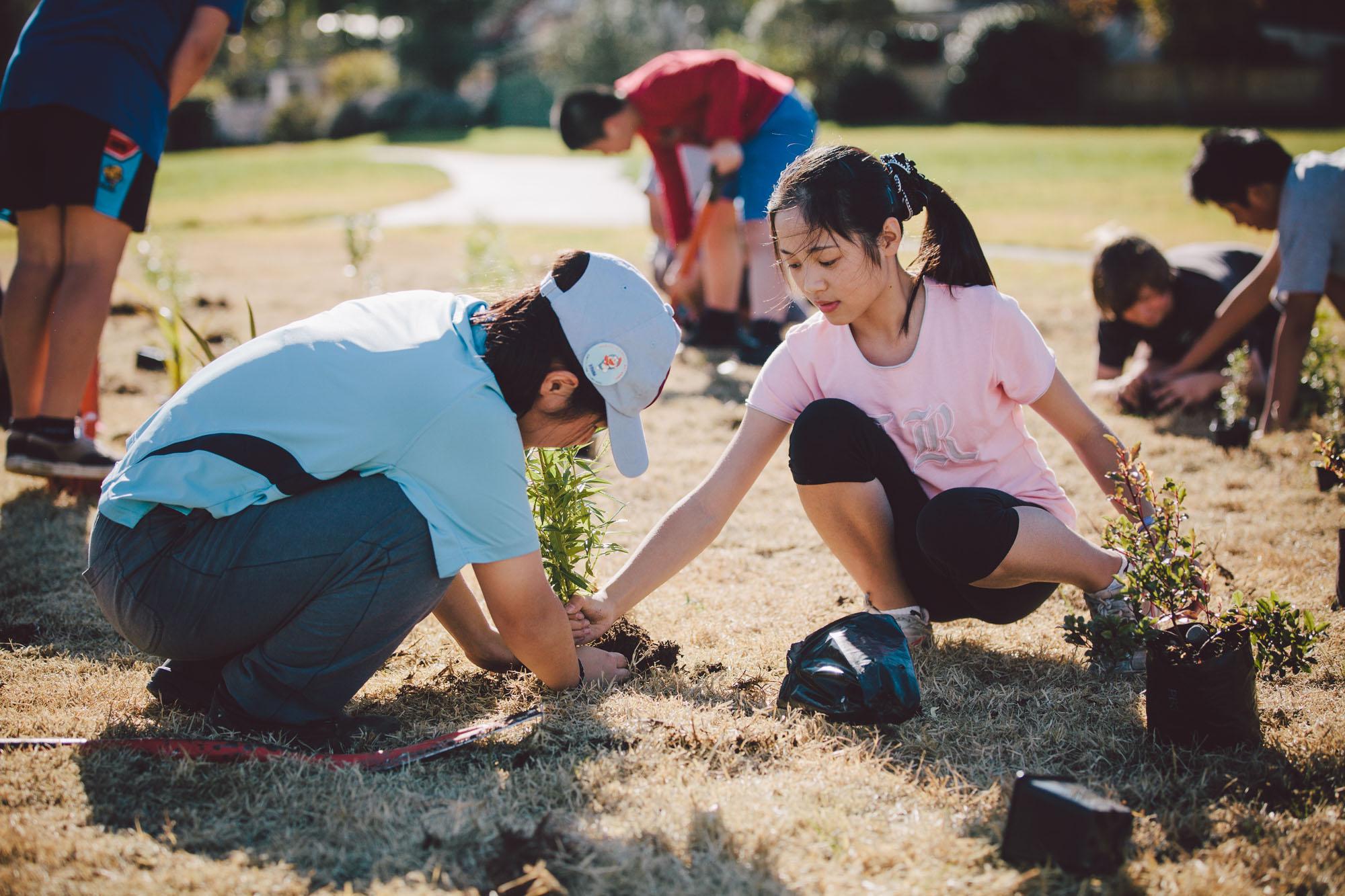 SCL-Tree-planting-175.jpg