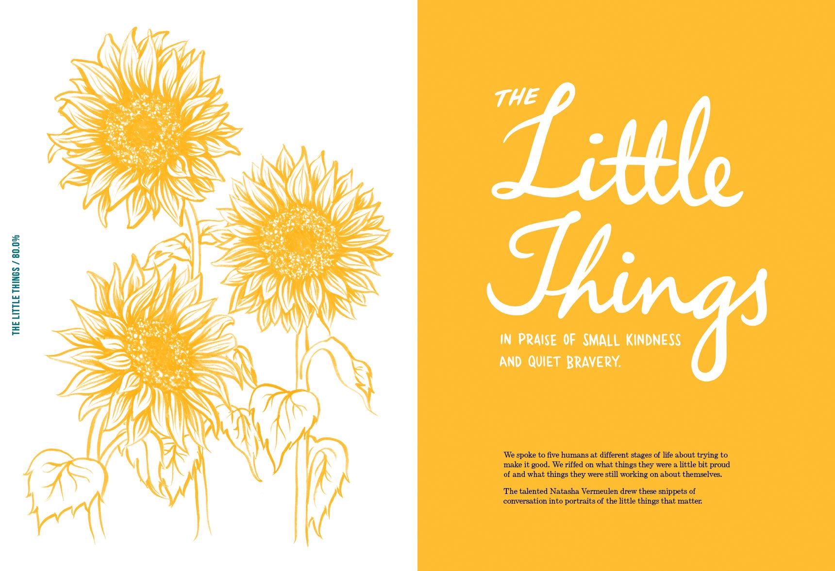 Little Things.jpg