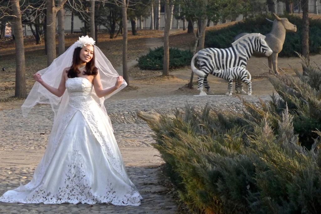Wedding photo, World Park, Fengtai
