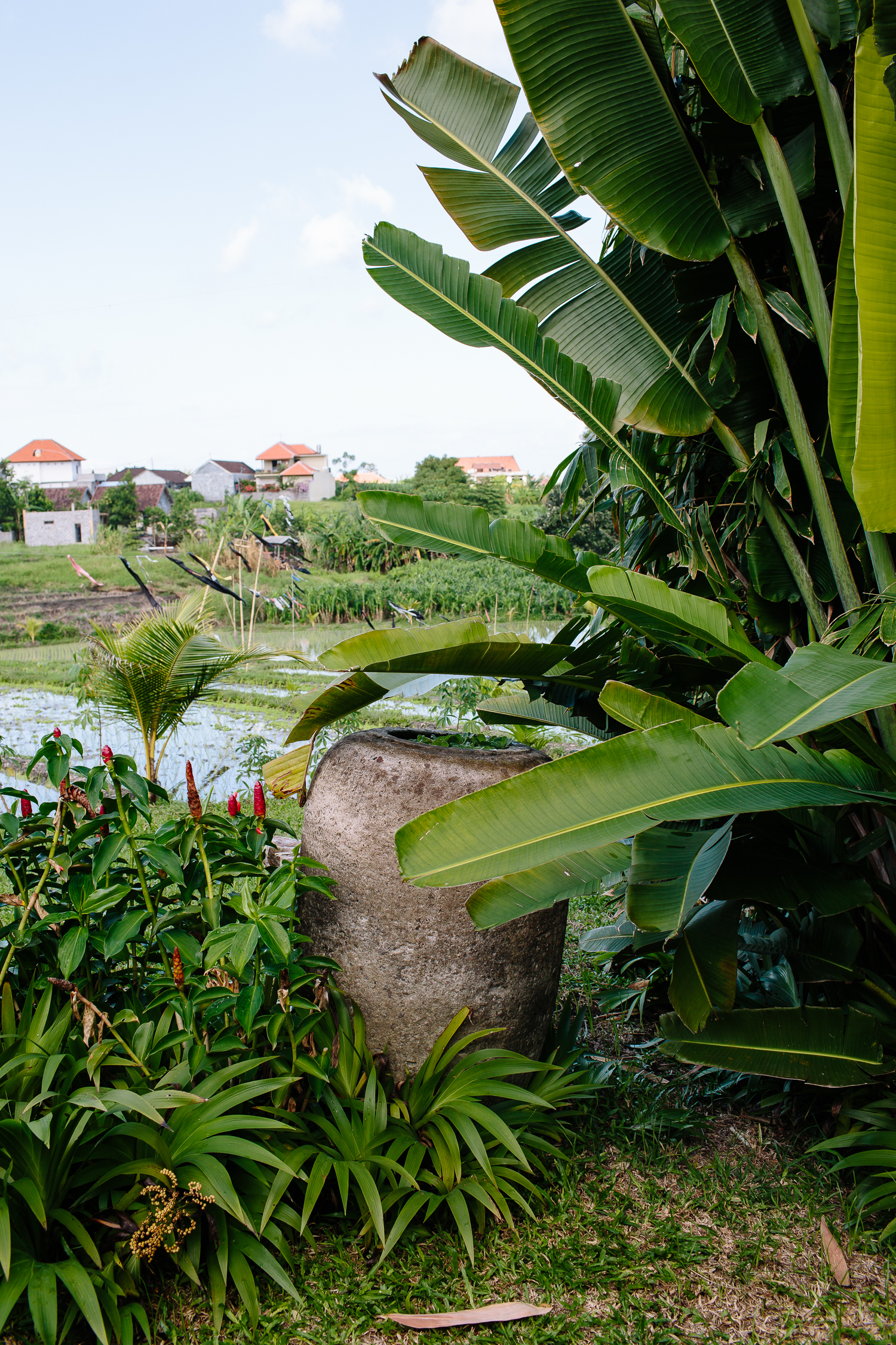 Bali-Kalapa-2016-4876.jpg
