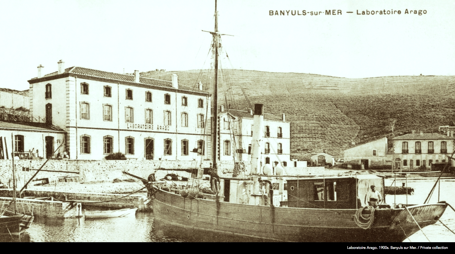 The not so distant past of coastal marine sciences: small isolated field stations, distant from urban centres, associated with summer tourism and seaside amusements.  Early 20th century view of the  Laboratoire Arago  in  Banyuls-sur-Mer , founded by  Henri de Lacaze-Duthiers  in 1882. A public aquarium is located on the ground floor of the main building and the station's boats are moored in front, including their second steam-driven boat (the 'Roland' II) in the foreground. Tourists and visitors stayed at the ' Grand Hôtel ' pictured in the background. [Postcard, Private collection]