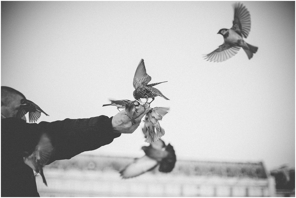 Ronel Kruger Photography Travel_5426.jpg